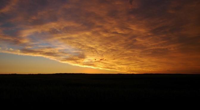 Buckskin Sky