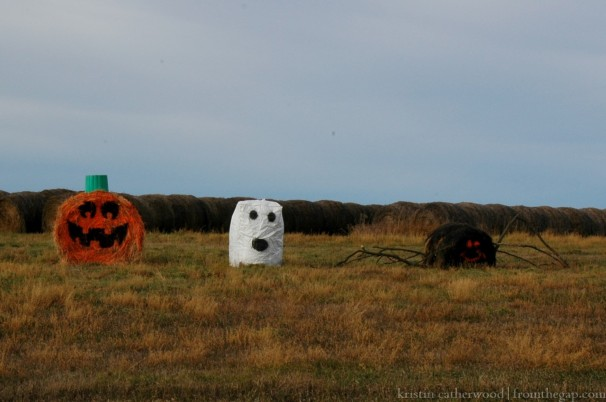 South of Radville. October 23, 2014.