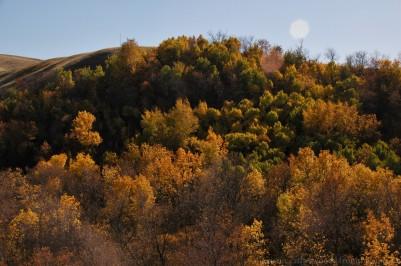 Sylvan Valley Regional Park, near St. Victor. September 27, 2015.