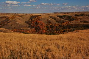 Coulees near the St. Victor Petroglyphs. September 27, 2015.
